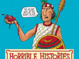 Angry Aztecs(book)