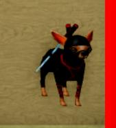 NinjaDog