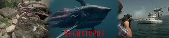 File:SharktopusBanner.jpg