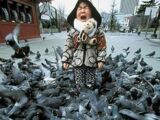 Possessed Pigeons