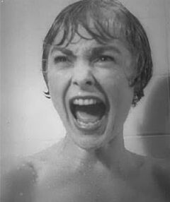 Marion crane janet leigh