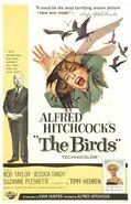 Birds xlg