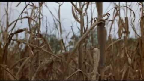 Dead Birds (2004) - Video Trailer