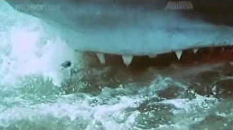 Shark scenes from Aatank (aka Bollywood Jaws)