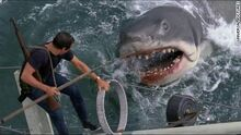 Highest-grossing-films-jaws-large-169