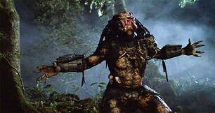 Unmasked Predator