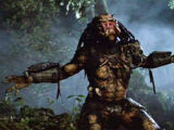 The Yautja (Predators)