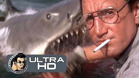 JAWS Movie Clip - You're Gonna Need A Bigger Boat (2K ULTRA HD) Steven Spielberg