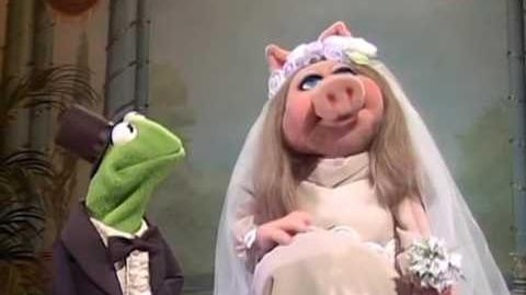 R. Kermit - Ignition (Remix) Muppets Mashup