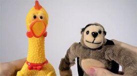 Happy Birthday Song (Chicken, Monkey Duet)