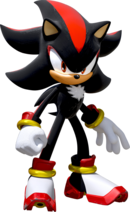 Team-Sonic-Racing Shadow profil