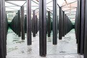 Luminato - House of Mirrors-0801