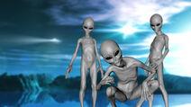 Grey aliens 2