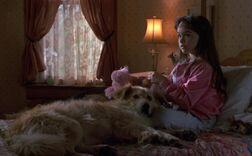 Джейми Ллойд и её пёс