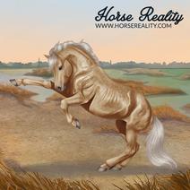 Mustang Stallion Palomino