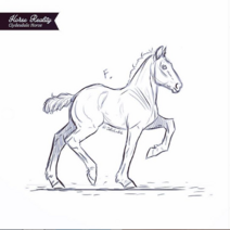 ClydesdaleFoalSketch