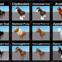 Breeds Horse World Wiki Fandom