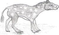 Eohippus drawing