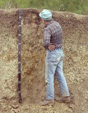 Soil sci