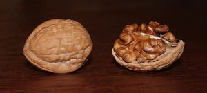 800px-English Walnuts