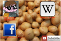 Thumbnail for version as of 22:31, October 7, 2014