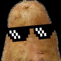 Potatoes Hoshcof Wiki Fandom