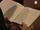 Ingeborgs dagbøker
