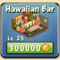 Hawaiian bar Facility