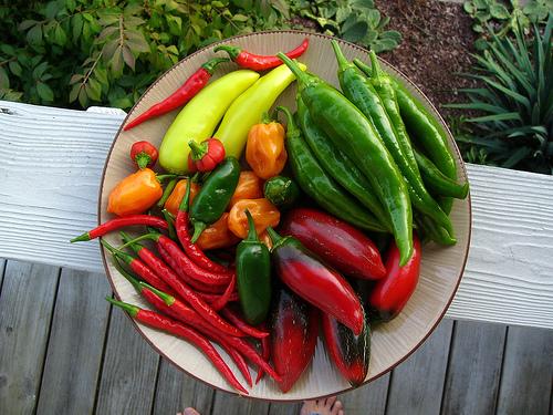 File:Peppers.jpg