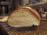Italian Bread - Crumb
