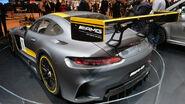 Mercedes AMG-GT3 - 1x1