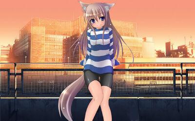 Anime Girl-Cat 021571