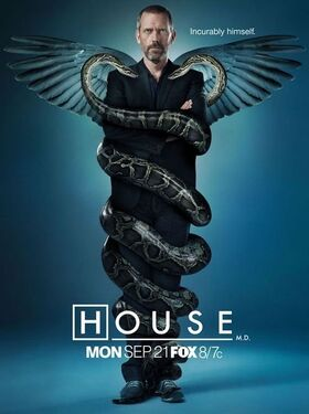 10825359-house-md