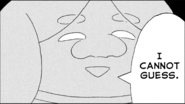 CicadaO