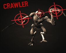 Crawler Weakpoints