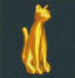 Cat hotd2