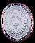 Silver coin hotdsd