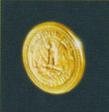 Coin hotd2