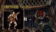 Strength (Type 205)