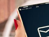 AMS PDA