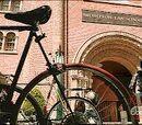 Universidad de Middleton