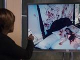 El Homicidio de Marjorie St. Vincent