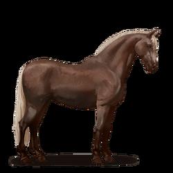 Koń andaluzytański-nowy wygląd