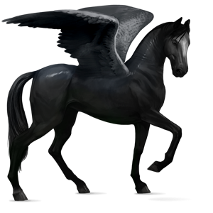 Fil:Akhal Teke Pegasus - Black.png