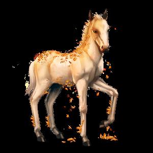 Topaz Foal
