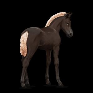 Fil:Akhal Teke Foal - Flaxen Liver Chestnut.png