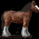 Adult Bay Drum Horse