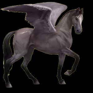 Fil:Akhal Teke Pegasus - Mouse Gray.png