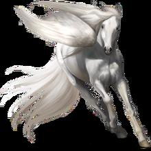 Pegasus GA coat
