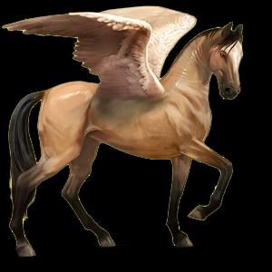 Fil:Akhal Teke Pegasus - Dun.png